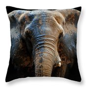 Just A Day At The Spa Throw Pillow
