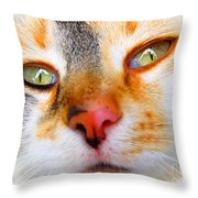 Just A Few More Days Throw Pillow