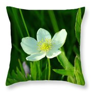 Just A Little White And Yellow Blossom Throw Pillow