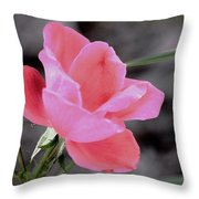 Just A Touch Of Color Throw Pillow