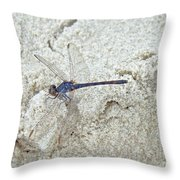 Just Another Day At The Beach Throw Pillow