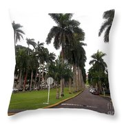Just Another Right Side El Prado Sidewalk Throw Pillow