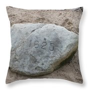 Just Another Veiw Of Plymouth Rock Throw Pillow