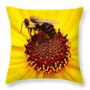 Just Bee Throw Pillow