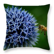 Just Beeing There Throw Pillow