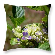 Just Blooming Throw Pillow