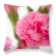 Just Carnations Throw Pillow