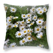 Just Daisies Throw Pillow