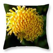 Just Dandy Throw Pillow