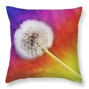 Just Dandy Rainbow 2 Throw Pillow