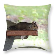 Just Five More Minutes Throw Pillow