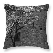 Just For A Walk Throw Pillow