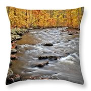 Just Going With The Flow Throw Pillow