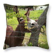 Just Hangin Out Throw Pillow