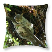 Just Hanging Out Near Home Throw Pillow