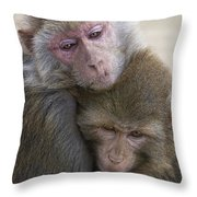 Just Hold Me Now Throw Pillow