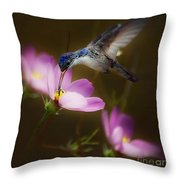 Just Loving The Cosmos Throw Pillow