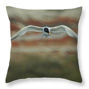 Just Missed Throw Pillow by Ernie Echols