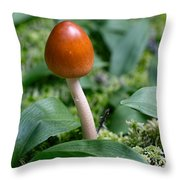 Just One Toadstool Throw Pillow
