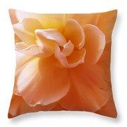 Just Peachy Begonia Flower Throw Pillow