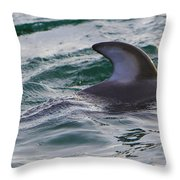 Just The Dorsal Throw Pillow