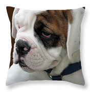 Just Too Cute Throw Pillow