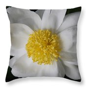 Just White Throw Pillow