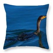 Juvenile Cormorant Swim Throw Pillow