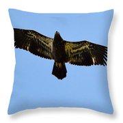 Juvenile Flight 8229 Throw Pillow