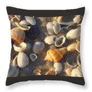 Juvenile Florida Fighting Conch Throw Pillow