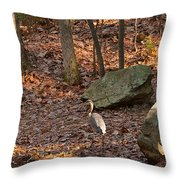 Juvenile Great Blue Heron  Throw Pillow