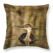 Juvenile Pied-billed Grebe Throw Pillow
