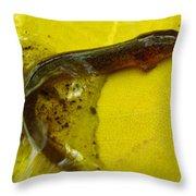 Juvenile Salamander Throw Pillow
