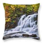 Kaaterskill Falls Throw Pillow