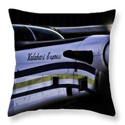 Kalahari Express Throw Pillow