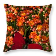 Kalanchoe Plant With Butterfly Throw Pillow by Garry Gay