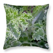 Kale Interior Throw Pillow