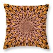 Kaleidoscope 2 Throw Pillow