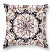 Kaleidoscope 21 Throw Pillow