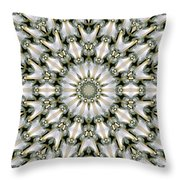 Kaleidoscope 28 Throw Pillow