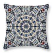 Kaleidoscope 29 Throw Pillow
