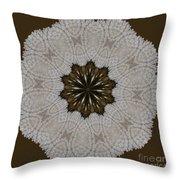 Kaleidoscope 36 Throw Pillow