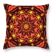 Kaleidoscope 42 Throw Pillow