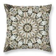 Kaleidoscope 53 Throw Pillow