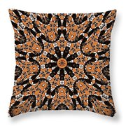 Kaleidoscope 62 Throw Pillow
