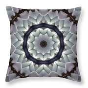 Kaleidoscope 63 Throw Pillow
