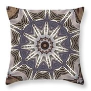 Kaleidoscope 64 Throw Pillow