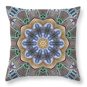 Kaleidoscope 73 Throw Pillow
