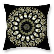 Kaleidoscope Ernst Haeckl Sea Life Series Steampunk Feel Triptyc Throw Pillow
