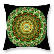 Kaleidoscope Ernst Haeckl Sea Life Series Triptych Throw Pillow by Amy Cicconi